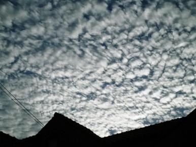 八幡宮 雲.jpg
